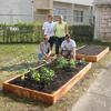 2 beds were planted at We Care Pantry courtesy of Plantation Garden Club.
